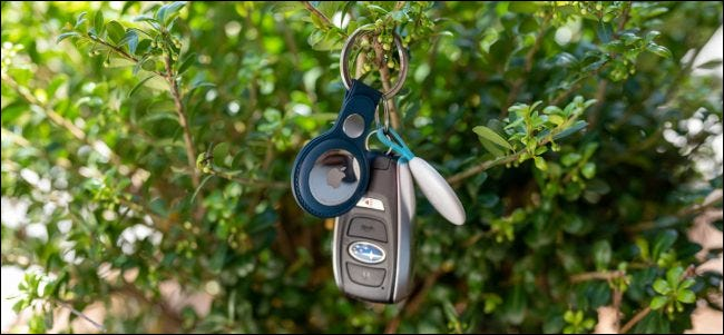 Apple AirTag Key Ring hanging on plants