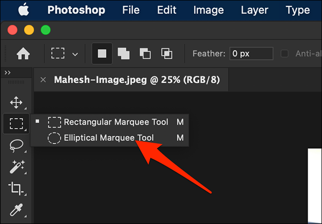 Select the Elliptical Marquee Tool on the Photoshop window