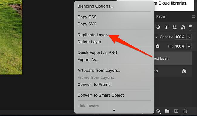 "Select ""Duplicate Layer."""