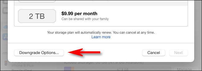 """Click """"Downgrade Options."""""""