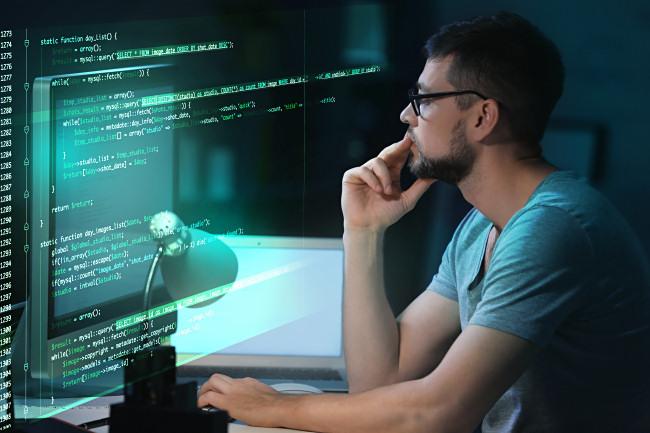 A programmer programming a bug.