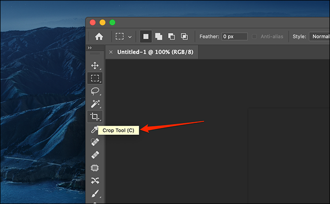 Example of a Regular tooltip in Photoshop