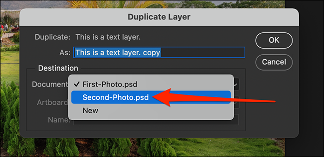 """Select a destination document in the """"Duplicate Layer"""" window."""