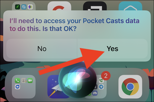 Some apps will require you give Siri access