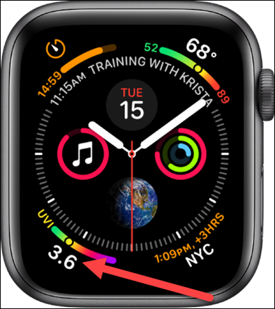 Infographic watch face on the Apple Watch.