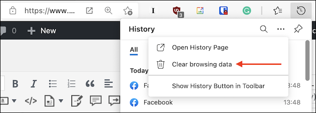 """Click the """"Clear Browsing Data"""" button from the menu in the History drop-down."""