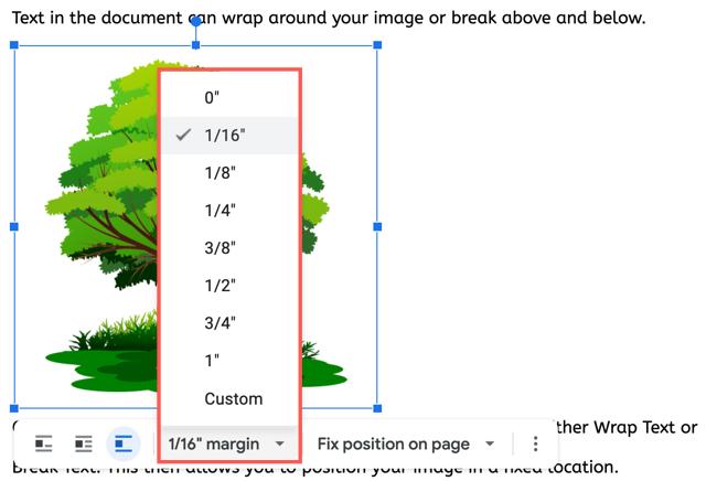 Adjust the image margin