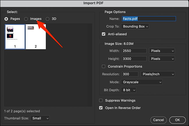 """Select the """"Images"""" tab on the """"Import PDF"""" window in Photoshop."""