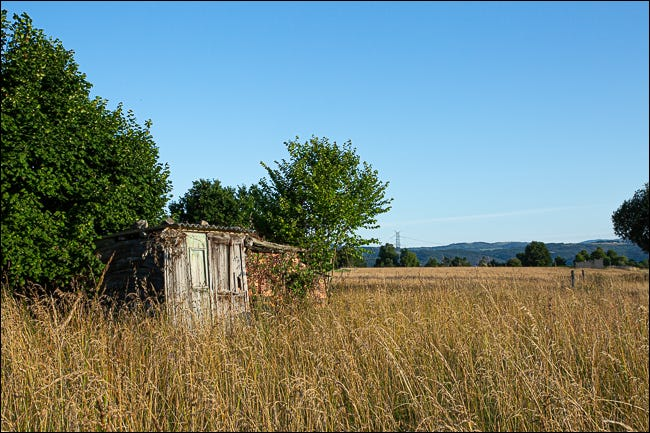 An abandoned shack in an overgrown field