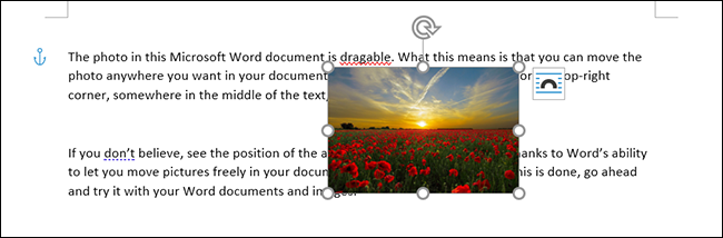 A picture placed on a block of text in Microsoft Word.