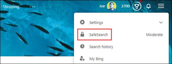"""Select """"Safe Search."""""""