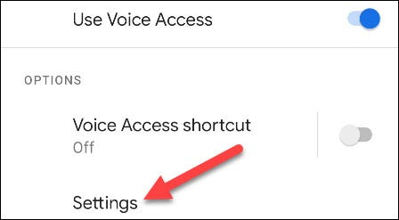 """Go to the Voice Access """"Settings."""""""