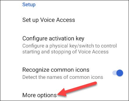 """Scroll all the way down to the """"Setup"""" section and tap """"More Options."""""""
