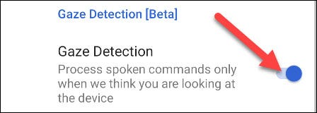 """At the bottom, you'll see a toggle for """"Gaze Detection."""" Turn it on."""