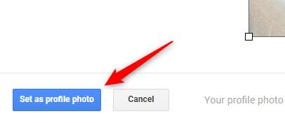 """Clique no botão """"Definir como foto do perfil""""."""