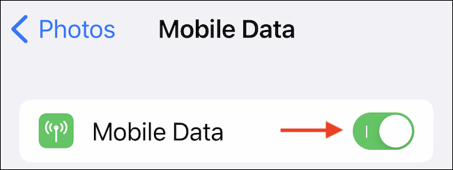 """Tap the toggle next to the """"Cellular Data"""" or """"Mobile Data"""" option to enable the feature."""