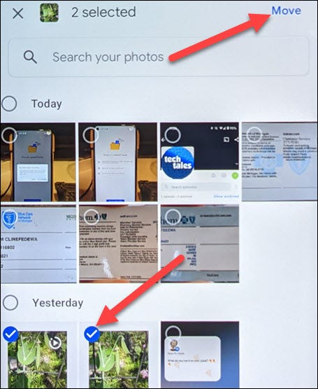 """Select photos and tap """"Move."""""""