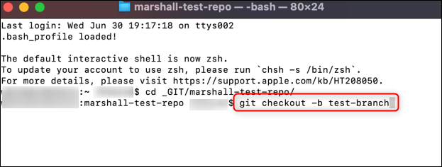 Run the command to create a new branch.