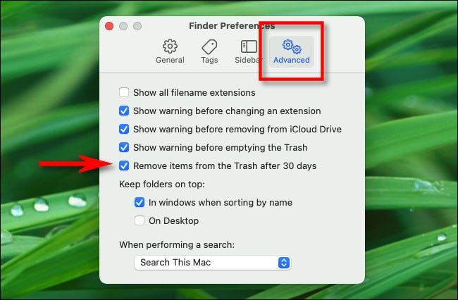 """In Finder Preferences, click """"Advanced,"""" then check """"Remove items from the Trash after 30 days."""""""