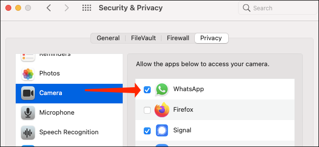 Granting camera access to WhatsApp on macOS Big Sur.