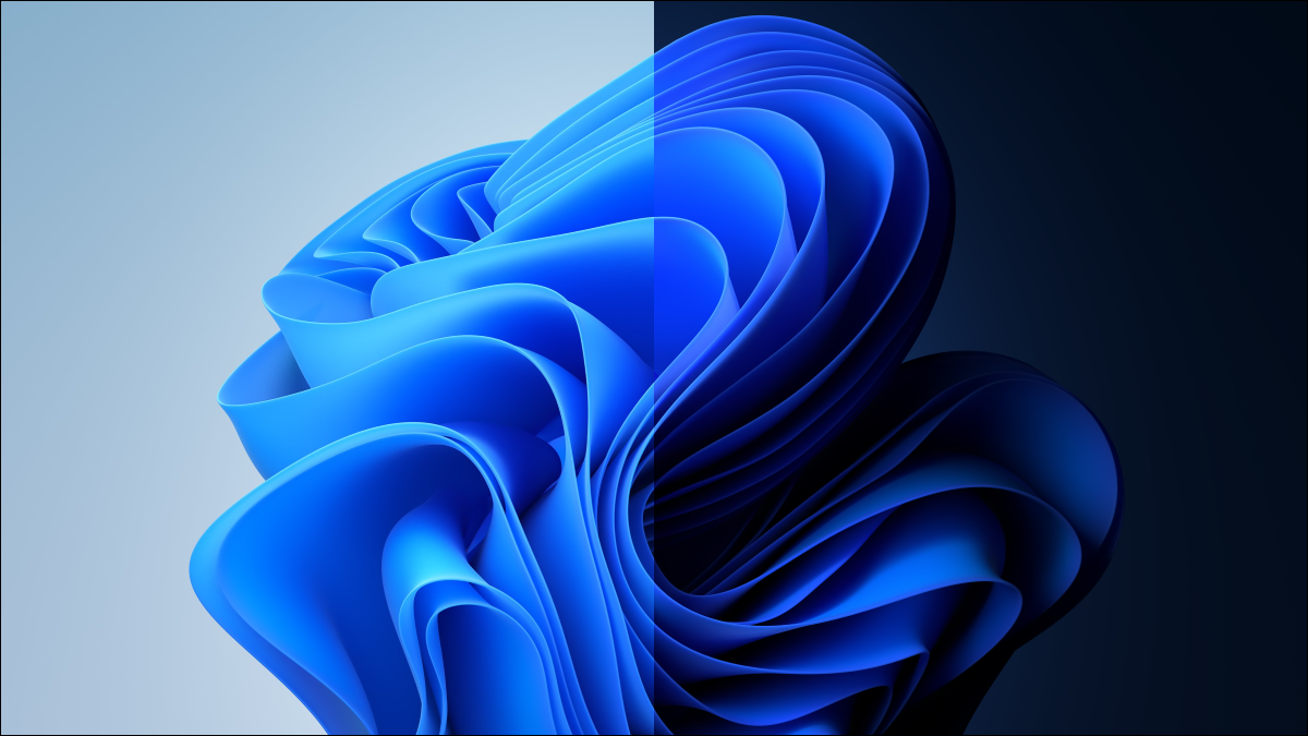 Windows 11's light and dark backgrounds.