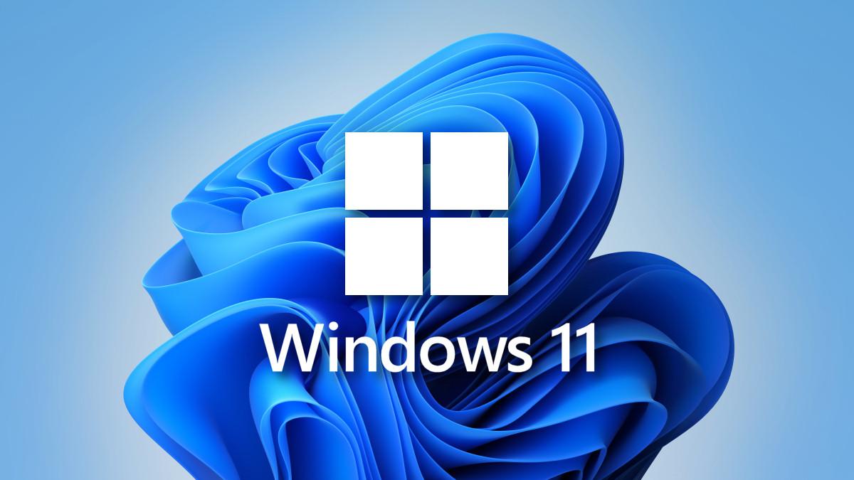 Windows 11 Logo with Wallpaper