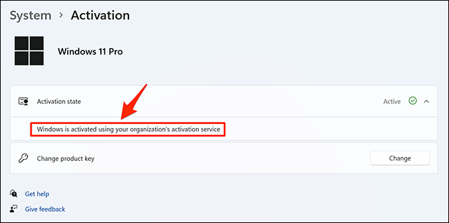 More details about Windows 11's activation status.