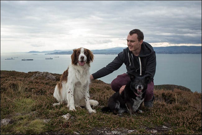 A man keeping the two dogs calm and ready for the photograph