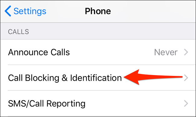 """Tap """"Call Blocking & Identification"""" in """"Phone"""" settings on iPhone."""
