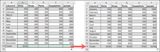 Drag the fill handle to copy the formula and view your total row