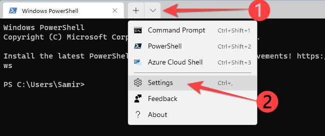 Open Windows Terminal Settings with Ctrl+, shortcut.