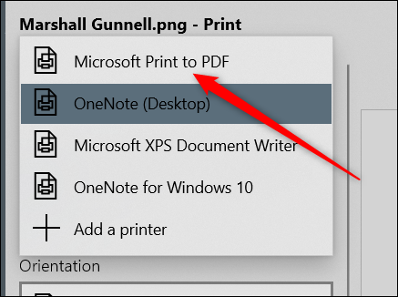 "Select the ""Microsoft Print to PDF"" option."