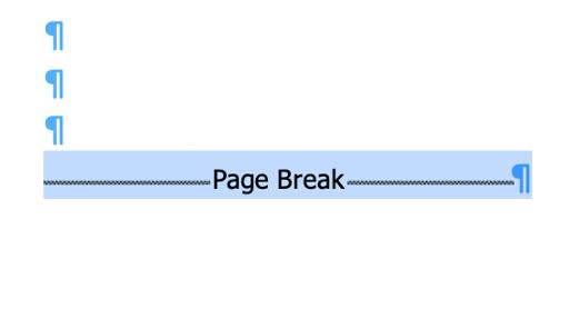 Seleziona la sezione o l'interruzione di pagina nel documento di Word.