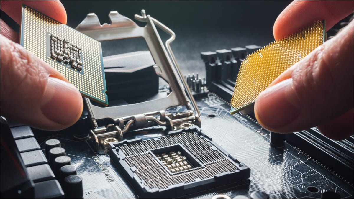 Fingers holding AMD and Intel processors