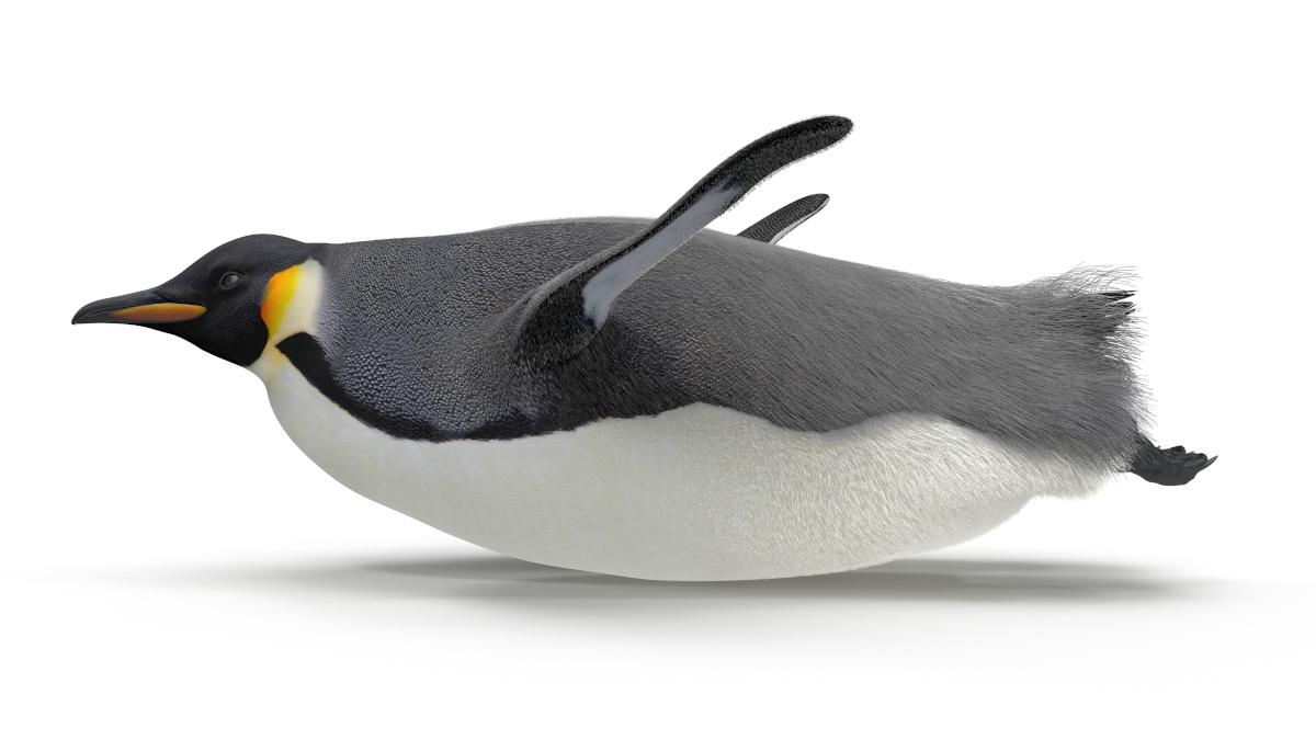 The 6 Best Lightweight Linux Distros