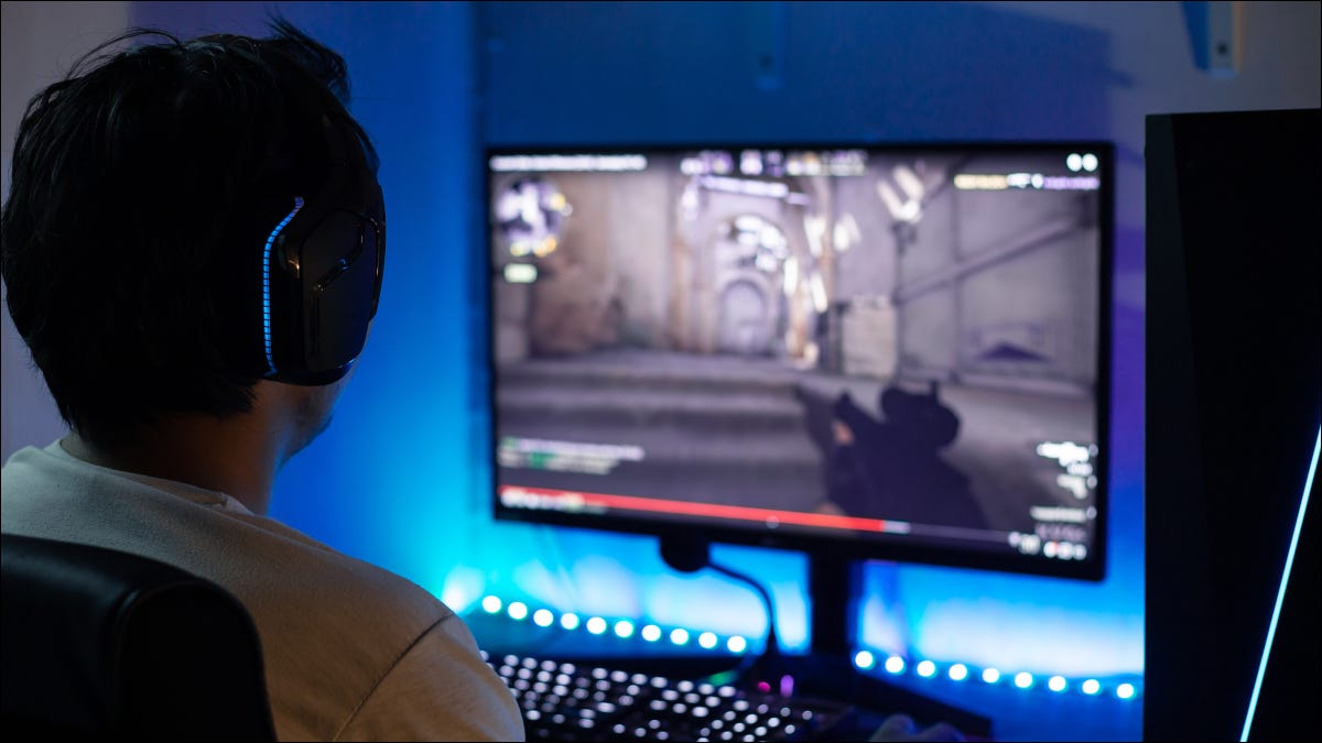 Back view of person playing a FPS game on PC