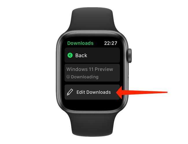 """На """"Загрузки"""" страницу в Spotify для Apple Watch, вы можете нажать """"Редактировать Загрузки"""" , чтобы остановить загрузку любого из элементов в очереди или удалить загруженный файл с Apple Watch."""