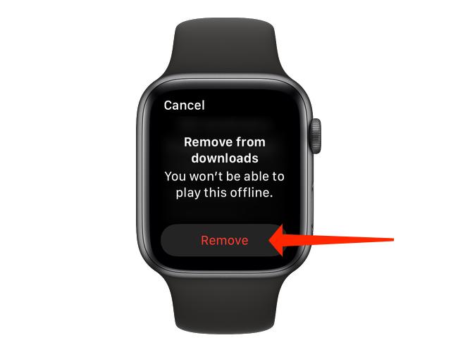 """Выберите песню или подкаст, которые хотите удалить, а затем нажмите """"Удалять"""" на странице загрузок в приложении Apple Watch Spotify."""
