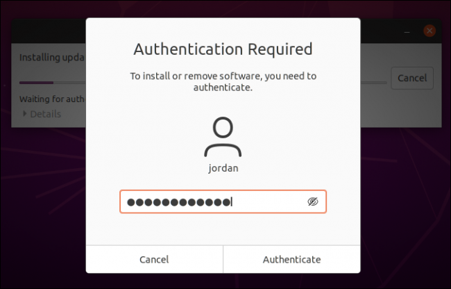 Type in your password and click Authenticate