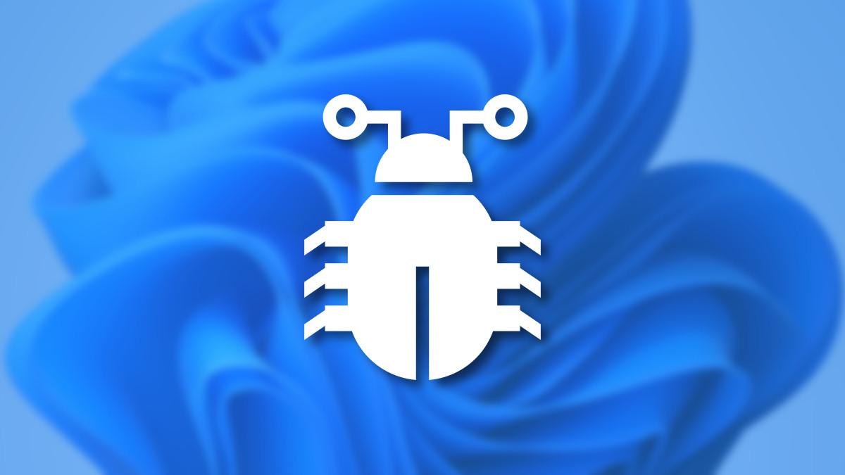 Windows 11 Computer Bug