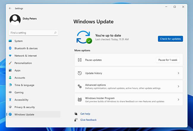 Windows Update in Windows 11 Settings.