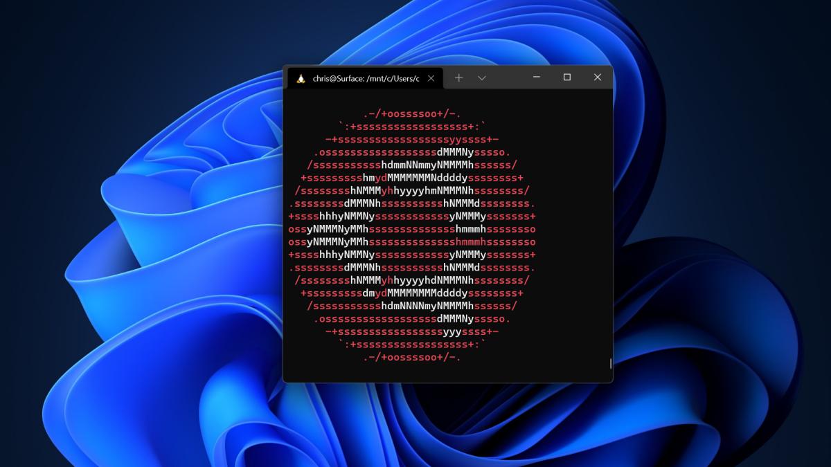 A Linux terminal showing the Ubuntu logo in the Windows Terminal on Windows 10.