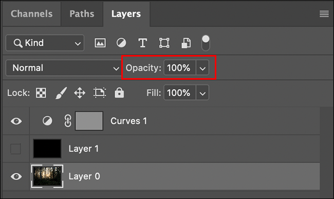 layer opacity is in the layers panel