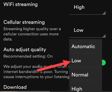 Seleziona una qualità di streaming.