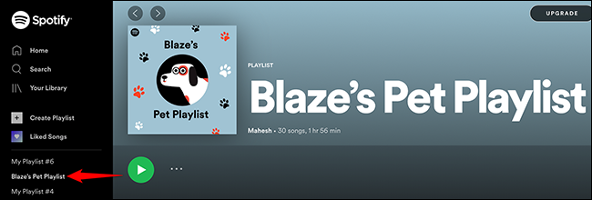 Access the pet playlist in Spotify's web player.