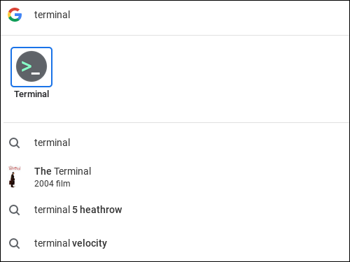 Searching for the word terminal on a Chromebook