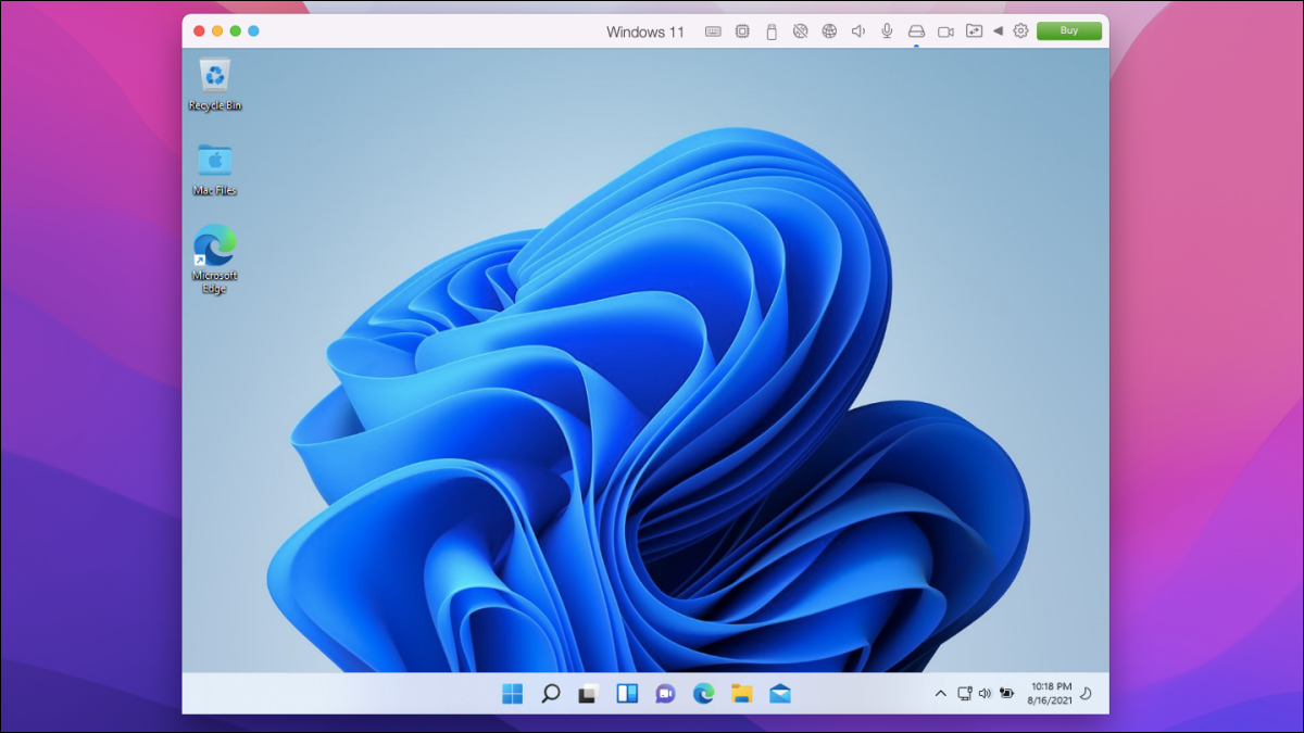Windows 11 running in a windowed mode on Mac