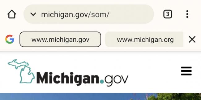 Google Search bar in Chrome.