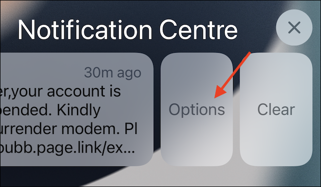 """After swiping, tap the """"Options"""" button to get your options for that notification."""