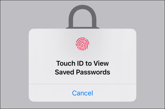 Use Face ID or Touch ID to access and view the saved passwords.